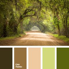 autumn forest color, autumn shades, brown green shades, dark green, deep green, grey green shades, misty, misty forest, moss color, shades of ginger-brown, shades of green.