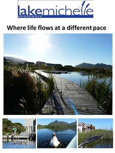 Lake Michelle | Harcourts Two Oceans | Passionate about property, passionate about people. Cape Town, Oceans, Passion, Fish, Mom, Outdoor Decor, People, People Illustration, Folk
