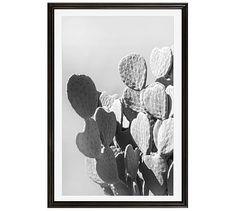 "Monochrome Desert Cactus Framed Print by Jane Wilder, 28 x 42"", Ridged Distressed Frame, Black, Mat"