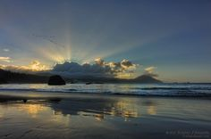 Sunbeams Over The Coastals  by Randall J. Scholten