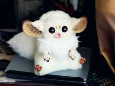 This is a toy based on the Inari Foxes of Japan: Ivory by ~Santani on deviantART.  IF THIS WAS A REAL ANIMAL I WOULD TOTALLY HAVE ONE!