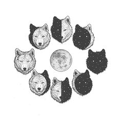 Moon Clan - Wolf Moon Cycle. Surrealism Employed to Draw Animal Illustrations. By Chen Naje.