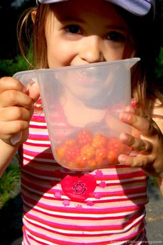 Guide to Cloudberries - My Little Norway