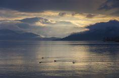 Wild ducks on Hardangerfjorden by Lidia, Leszek Derda on Ducks, Celestial, Explore, Sunset, Landscape, Outdoor, Outdoors, Scenery, Sunsets