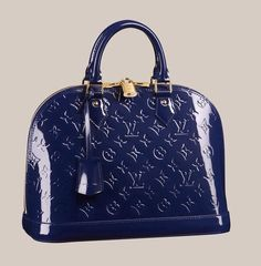 Navy Louis Vuitton hand bag....I think yes:)
