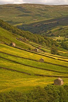 Swaledale, Yorkshire Dales, Britain