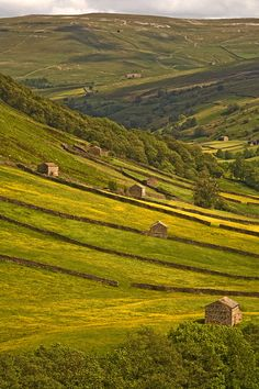 Swaledale, Yorkshire Dales, Britain