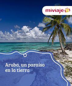 """Aruba, un paraíso en la tierra   La llaman la """"isla feliz"""", y no es para menos, Aruba es un auténtico paraíso situado en el corazón del mar Caribe. Un lugar perfecto para olvidarse de todo. #Destinos"""