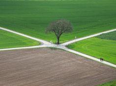 Quo vadis? Incrocio di due strade in un campo a Münzenberg, nell'Assia, in Germania.