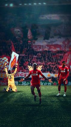 Liverpool Champions, Liverpool Fc, Liverpool Wallpapers, Red Day, Thailand, Football, Soccer, American Football, Soccer Ball