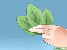Come Ottenere gli Scheletri delle Foglie: 12 Passaggi Artisanal, Skeleton, Leaves, How To Make, Flower Preservation, Resin, Skeletons