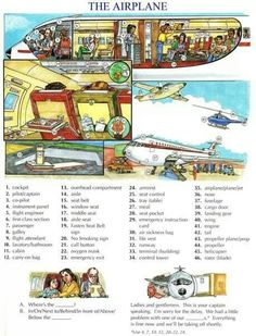 On the airplane/aeroplane vocabulary.