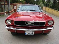 our mustang 66