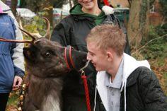 Reindeer Kiss