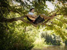 Senior boy portrait, Senior playing guitar in tree #capecodseniorphotos #capecodportraits