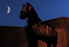 Hobby Lobby lawsuit is a Trojan horse -- the Raw Story