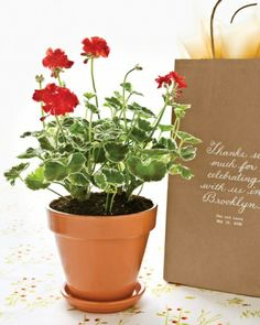 Take Home Decor Guests toted the potted geranium centerpieces in paper bags printed with a gracious thank-you note from the newlyweds.