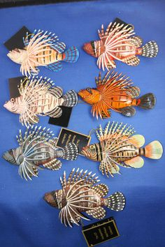 "7 6"" 3 D Lion Fish Wall Plaques Tropical Fish Sea Life Mural Ocean Fish Aquatic 