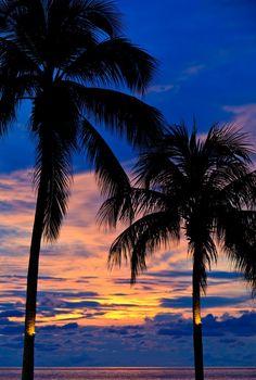 Sonnenuntergang mit Palmen am Strand