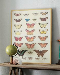 Cuadro de mariposas