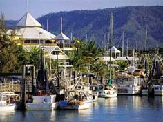 Port Douglas Marina in Queensland, Australia. Where they filmed some of the movie 'Fools Gold~cannot wait to travel to right here:-) Australia Holidays, Australia Trip, Queensland Australia, Australia Living, Wonderful Places, Great Places, Places Ive Been, Beautiful Places, Atrium Ideas