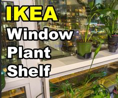 windowsill plants Epic Windowsill Plant Shelf 55 In Small Home Decoration Ideas with Windowsill Pl.