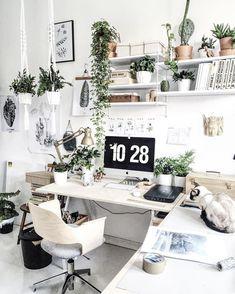 Tak sobie siedzimy z Focusem i pracujemy 😊🐈❤️🌿 #workshop#workspace#pracownia#art#plants#urbanjungle#plantslover#fern#drawings#deskme#walldecor#macrame#macrameart#kwiatysapiekne#vscovibes#goodvibesonly#love#beauty#igdaily#artsy#succu#cactus#scandinavianhome#design#tv_living#mybeigestyle