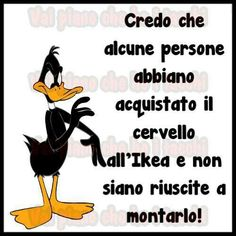 I think some people bought their brains at IKEA and forgot to assemble them! Italian Humor, Haha So True, Meaningful Words, Funny Images, Vignettes, Decir No, Einstein, Funny Quotes, Hilarious