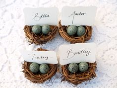 Nest Place Cards, Wedding Spring Favor Robin Egg Blue 10 Easter Woodland Rustic Fairytale Classic Shabby Chic Country Theme Baby Shower by Fairyfolk on Etsy https://www.etsy.com/listing/91662432/nest-place-cards-wedding-spring-favor
