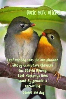 Good Morning Rainy Day, Good Morning Wishes, Good Morning Quotes, Lekker Dag, Rumi Love, Afrikaanse Quotes, Goeie Nag, Goeie More, Jesus Christus