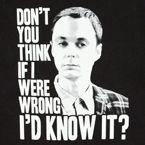 Eu sou muito inteligente.  Você não acha que se eu estivesse errado eu não saberia.