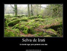 Irati, Nafarroa http://www.casasdelirati.com/