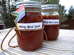 South African Monkey Gland Sauce - South Africa's favourite BBQ sauce—no monkeys were used in the making of this sauce. South African Dishes, South African Recipes, Africa Recipes, Chutneys, Braai Recipes, Cooking Recipes, Ketchup, Kos, Biltong