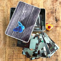 Cadouri - handmade Shop   mit Liebe hergestellte Produkte für Zwei- & Vierbeiner   Blechdose BLAUER SCHMETTERLING Bunt, Blue Butterfly, Tin Lunch Boxes, Wrapping Papers, Packaging
