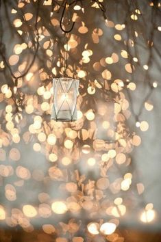 twinkle lights and lantern