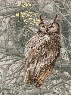 Eagle Owl - borduurpakket - Riolis