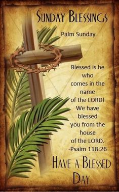 Palm Sunday Quotes Jesus, Sunday Prayer, Sunday Wishes, Sunday Greetings, Christmas Greetings, Birthday Greetings, Happy Palm Sunday, Blessed Sunday, When Is Palm Sunday