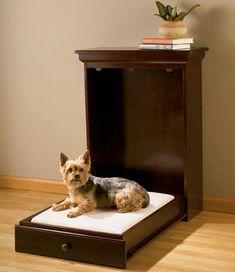 los perros también tienen sus camas con sus colchones.