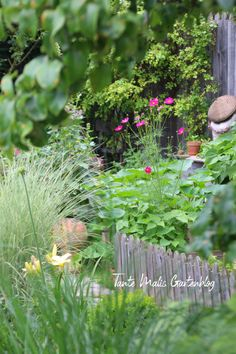 Gemüsegarten - Gemüse ist gesund, macht schön und schlau #gemüsegarten #gemüse #bauerngarten #cottagegarden #romantischer Garten Beets, Abs, Garden, Plants, Cucumber Recipes, Queen Annes Lace, Allotment, Roots, Farmhouse Garden
