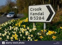 Image result for Kendal Crook Storyboard, Kendall, Novels, Dots, Stock Photos, Outdoor Decor, Pictures, Image, Stitches