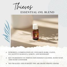 Thieves is a power packed blend that your whole family will love. Try Thieves Vitality (internally) for immune and respiratory support! Thieves Essential Oil, Essential Oil Blends, Thieves Household Cleaner, Key Ingredient, Young Living Essential Oils, Hand Sanitizer, Aromatherapy, Essentials