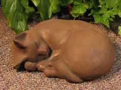 "CAT Curled LARGE 12"" STATUE Kitten Sculpture DARK BROWN STAINCast CEMENT GARDEN Outdoor Decor by eEarthExchange. $82.95. MADE in the USA!!!   Ships Ground with insurance. POURED CONCRETE - Cast Stone - NO RESIN. 12 x 10 x 5, 17 lbs. Picture color shows DARK WALNUT-BROWN -- This is the COLOR STAIN YOU WILL RECEIVE!. More Garden Statuary in eEarthExchange Marketplace Store. Each casting is hand finished using an antiquing stain that permanently changes the exterior surfac..."