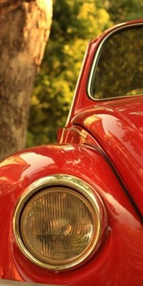 The first car I bought for myself was a 1976 Red Volkswagon Beetle! Red Beetle, Beetle Bug, Vw Beetles, Van Vw, My Favorite Color, My Favorite Things, I See Red, Vw Vintage, Simply Red