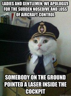 30 Funny cat Pictures #Funny #Cats - Tap the link now to see all of our cool cat collections!