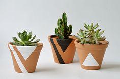 Vaso Terracota M + cactos e suculentas Cactus, Painted Pots, Terracotta Pots, Planting Flowers, Diy Home Decor, Diy And Crafts, Flora, Succulents, Green