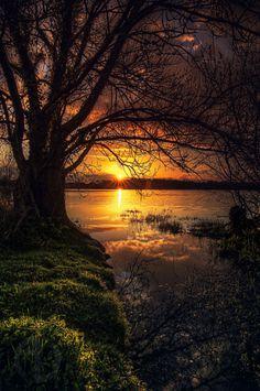 "wowtastic-nature: "" 💙 lac de beaulieu on by Antoine Daniel, Nantes… Beautiful World, Beautiful Images, Beautiful Things, Beautiful Nature Scenes, Landscape Photography, Nature Photography, Scenic Photography, Beautiful Sunrise, Nature Pictures"