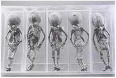 Oddment Emporium-The Mummified Remains of the First Quintuplets