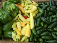 Get local food at Quarry Farmers & Ranchers Market! Find, rate and share locally grown food in San Antonio, Texas. Support farmers markets that sell locally grown in YOUR community! See more Farmer's Markets in San Antonio, Texas.