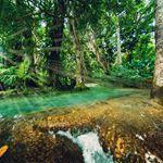 Gysir in Island www.at Everglades National Park, Location, Gopro, Jamaica, Orlando, Golf Courses, National Parks, Disney, Instagram