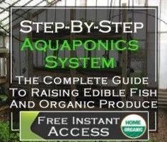 Commercial Aquaponics and Aquaponics Business Plans